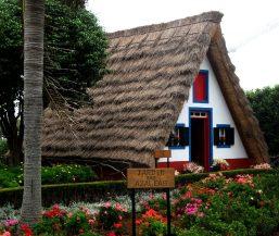 Getting Around Madeira: Santana