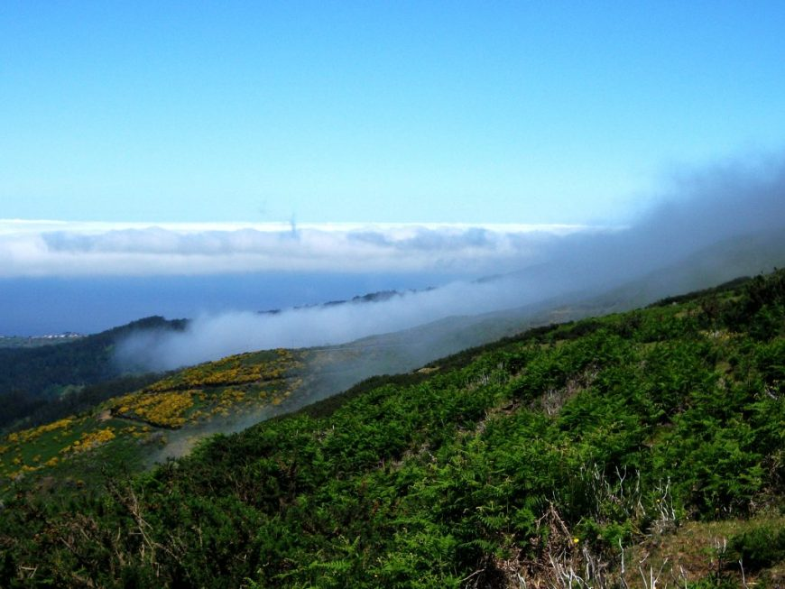 Madeira View Above The Clouds