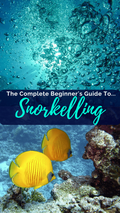 The Complete Beginner's Guide to Snorkelling
