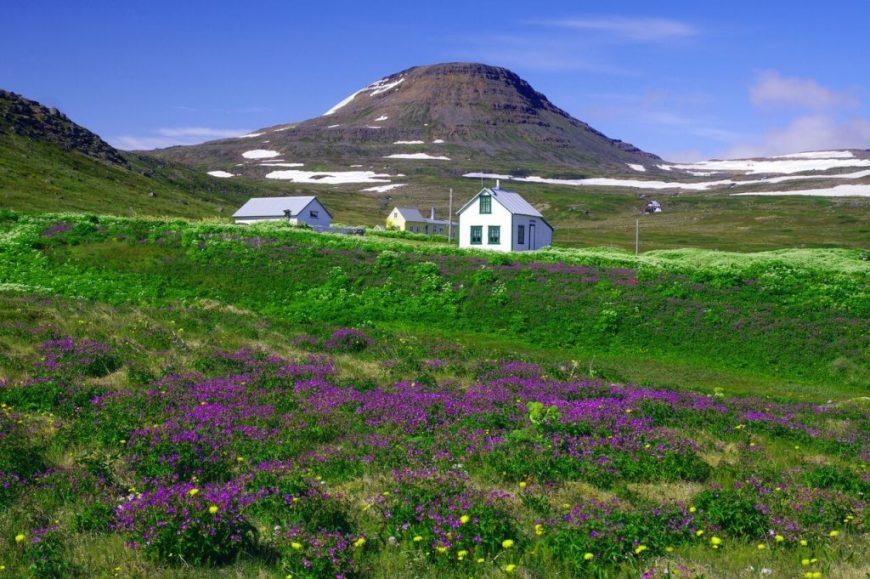 Iceland-Hornstrandir-National-Park