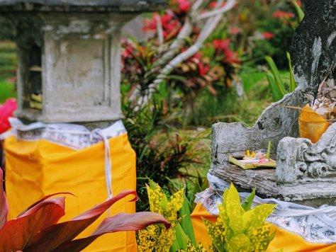 Offering at Jatiluwah Rice Terrace in Bali