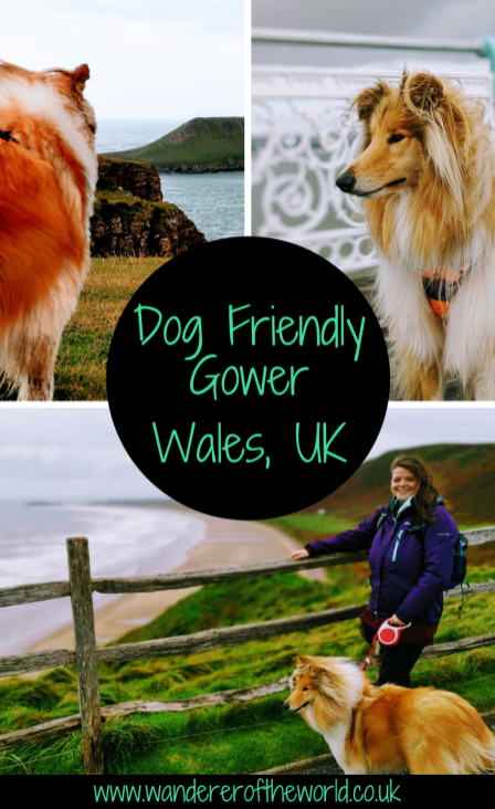 Dog Friendly Gower: Your Dog Friendly Guide To South Wales