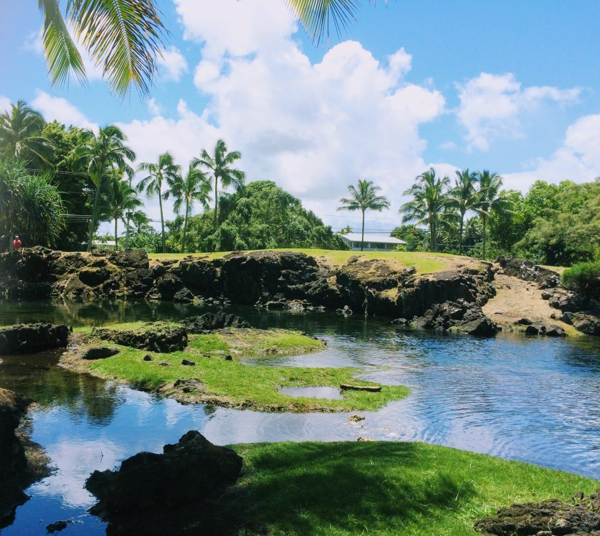 Keaukaha Beach Park near Hilo Hawaii