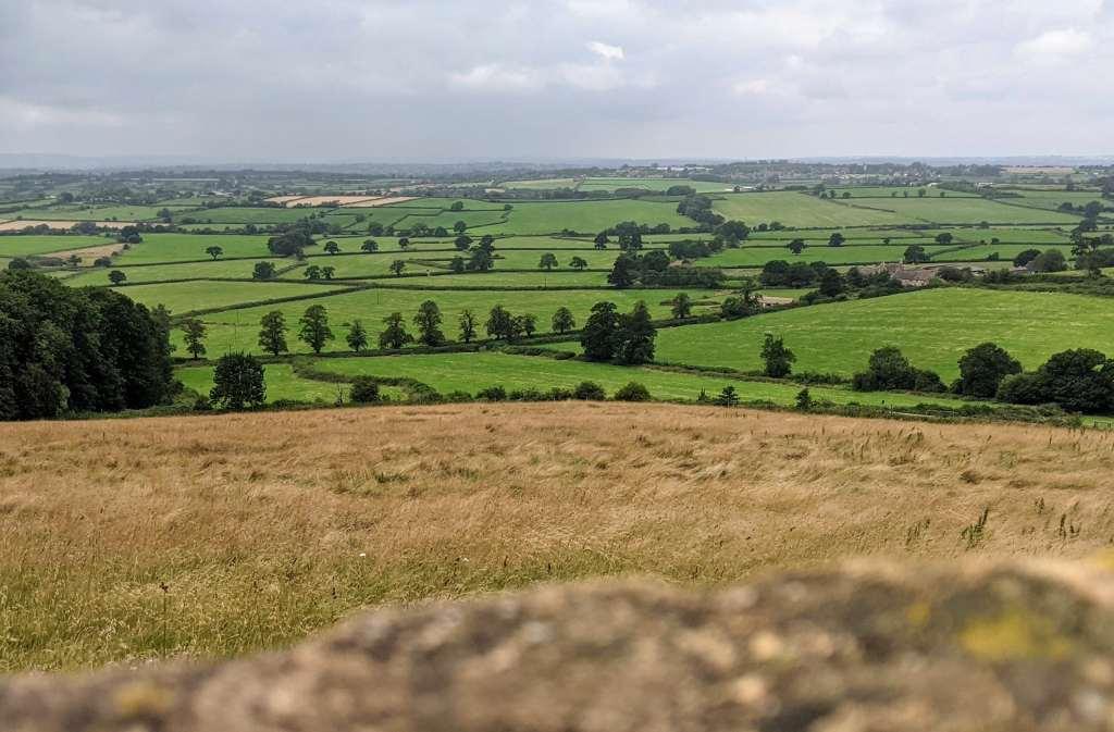 More Dyrham Park views