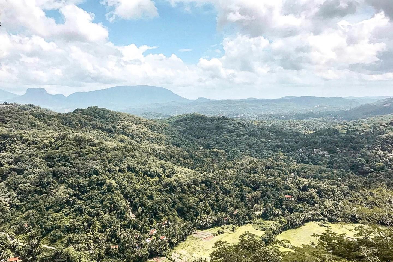 Wanderers & Warriors - Kandy To Ella Train Sri Lanka - Views