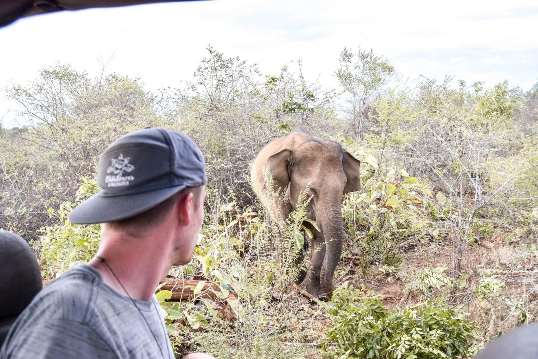 Wanderers & Warriors - Charlie & Lauren - Udawalawe National Park, Sri Lanka