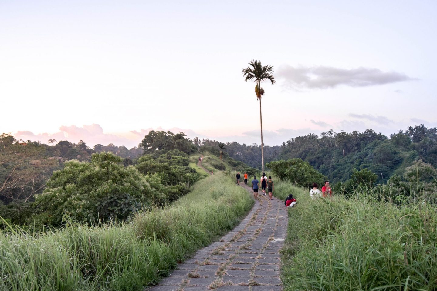 Wanderers & Warriors - Campuhan Ridge Walk Ubud - A Free & Easy Trek - Campuhan Ridge Walk Price - Things To Do In Ubud - Sunset at Campuhan Ridge Walk