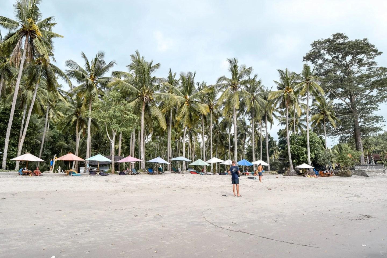 Wanderers & Warriors - Palm Trees Crystal Bay Beach Nusa Penida - Paket Wisata Nusa Penida - Paket Tour Nusa Penida Beaches - Wisata Nusa Penida