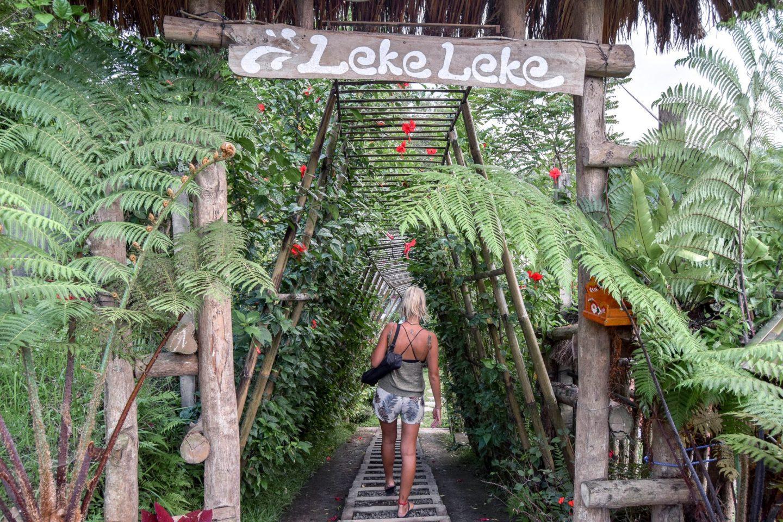 Wanderers & Warriors - Leke Leke Waterfall Bali - An Awesome Day Trip - Bali Waterfalls - Best Waterfalls In Bali - Waterfalls Near Ubud