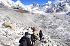 Walking on the Glacier rocks