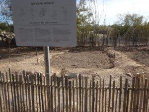 Hohokam Garden. Pueblo Grande Museum. Phoenix