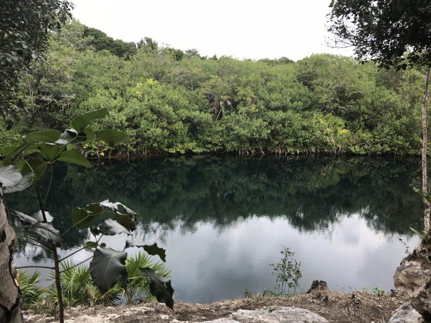Cenote at Xel-Ha Ruins