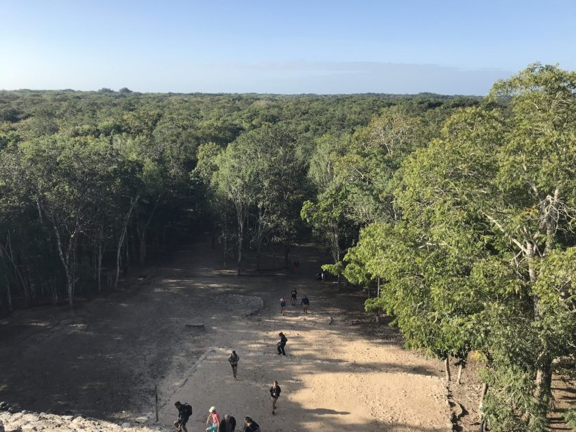 View from the Top of Nohuch Mul, Cobá