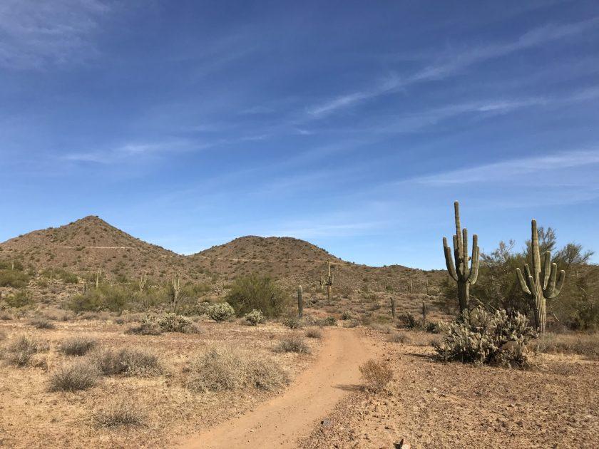 Trails in the Desert. Phoenix, Sonoran Desert Preserve