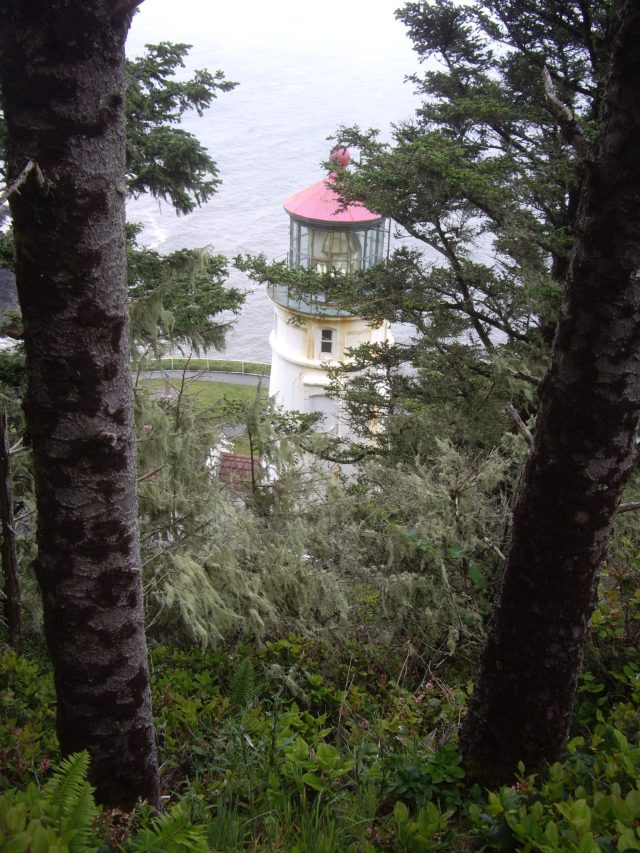 Heceta Head Lighthouse. View from the trail