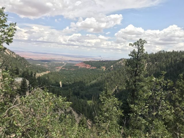 View from the top of the Chuska Mountains