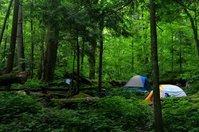 Our camp (and neighbors) at campsite #34 in the Smoky Mountains