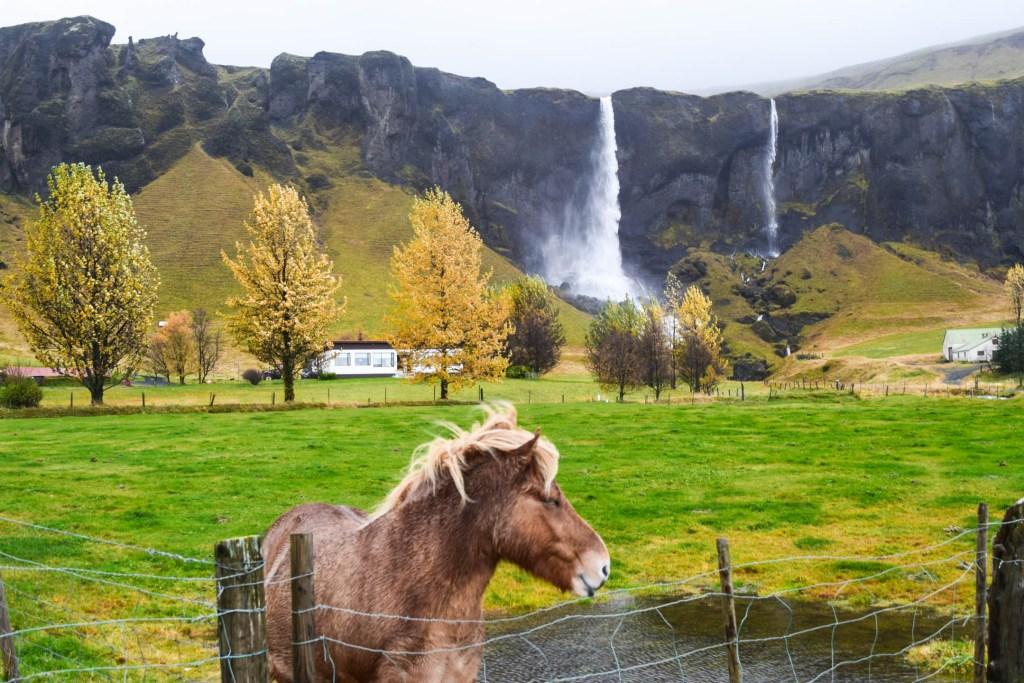 Views Along Iceland's South Coast