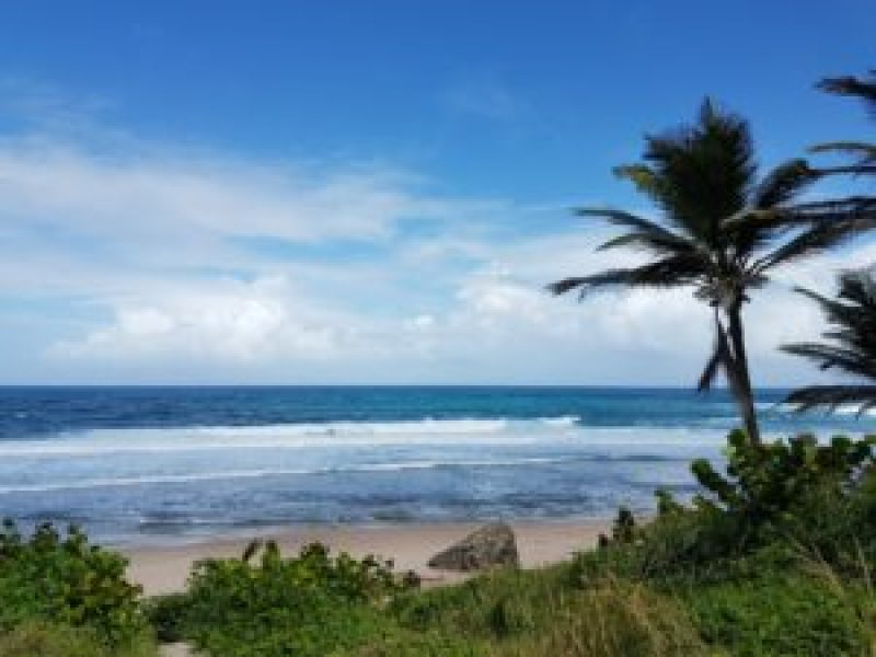 Bathsheba Beach Barbados: Island Tour of Barbados