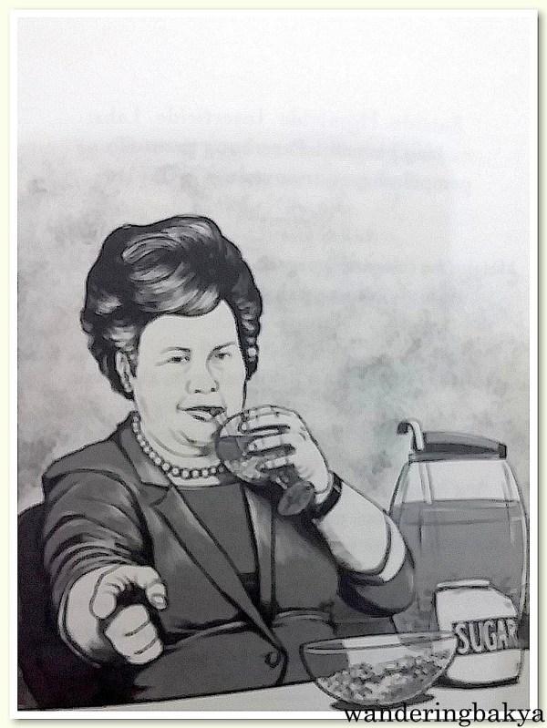 """Illustration on page 29 of Senator Miriam Defensor Santiago's """"Stupid is Forever"""""""