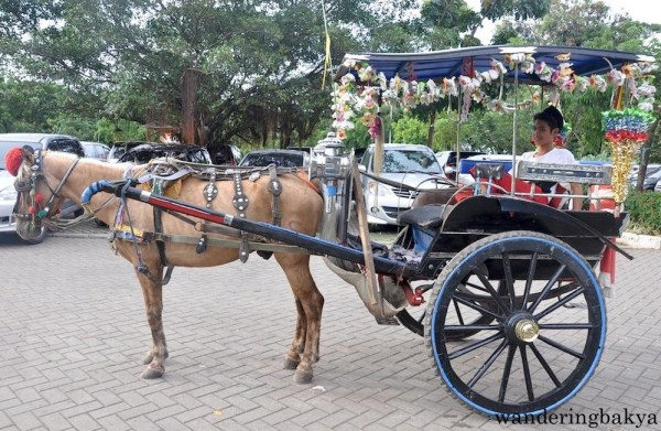 Delman or horse-drawn carriages are plentiful in Merdeka Square.