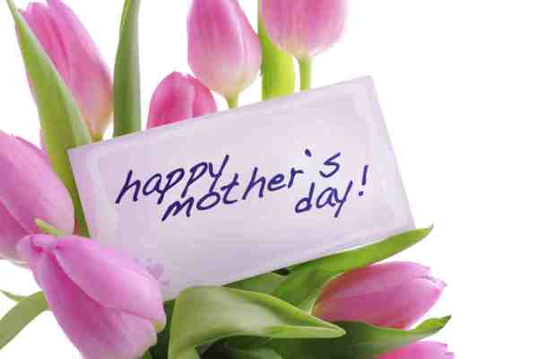 Happy Mother's Day! Photo from epicmls.com.