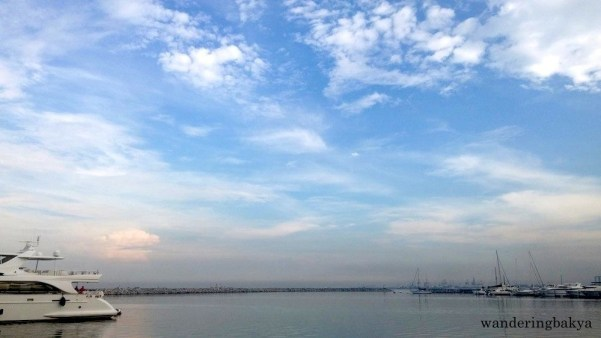 I know this is superfluous, but I like the color blue, so here we have a photo of the blue sky and somewhat blue water of Manila Bay.