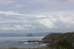 Morro Rock from the bluffs