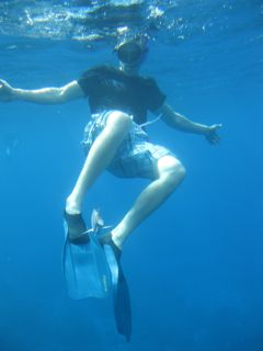 Snorkelling on the Caribbean island of Guadeloupe