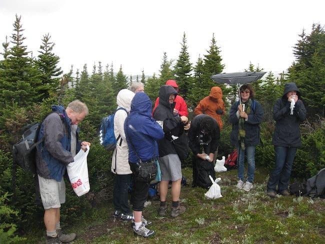 Banff Centre hiking group at Sunshine