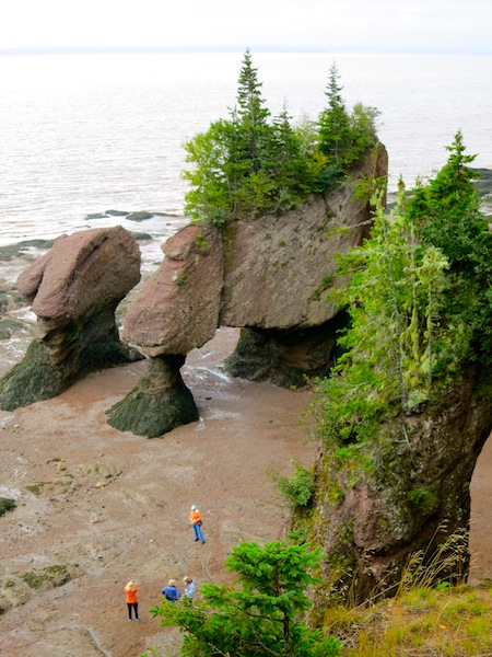 Things to do in Canada: visit The Hopewell Rocks
