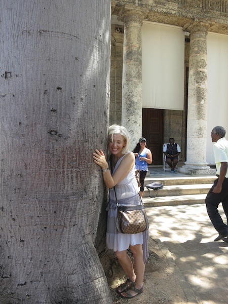 El Templete in Havana where there is a sacred tree