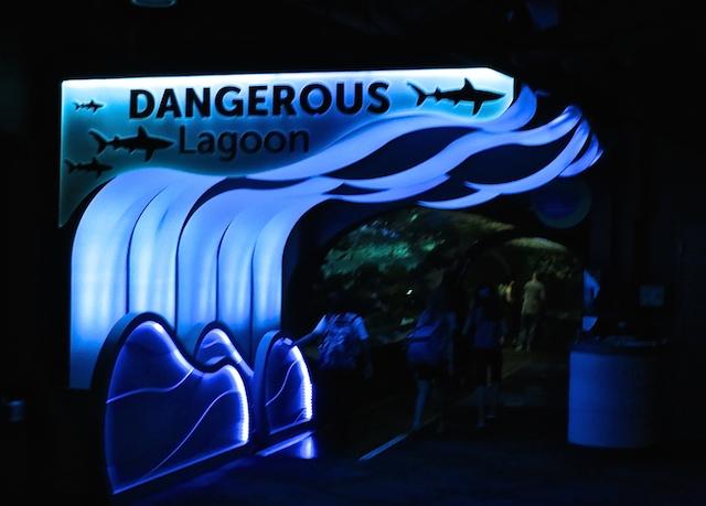 Ripley's Aquarium Toronto Hazardous Lagoon