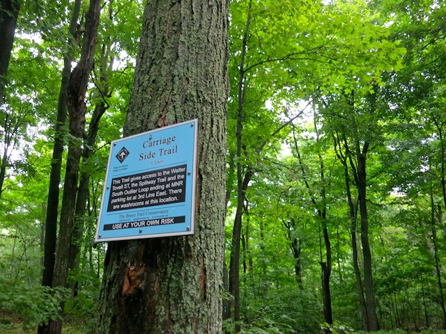 Bruce Trail has 400 km of side trails