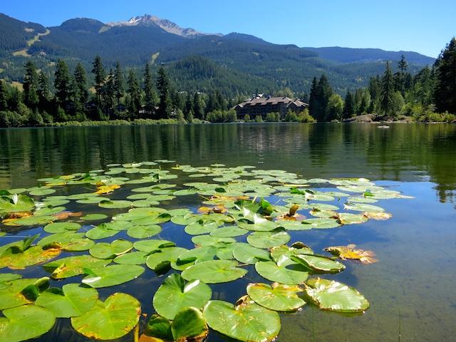 Nita Lake Lodge in Whistler Creekside review, lake view