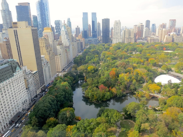 Hotel review The Pierre New York view of Central Park from Tata Suite