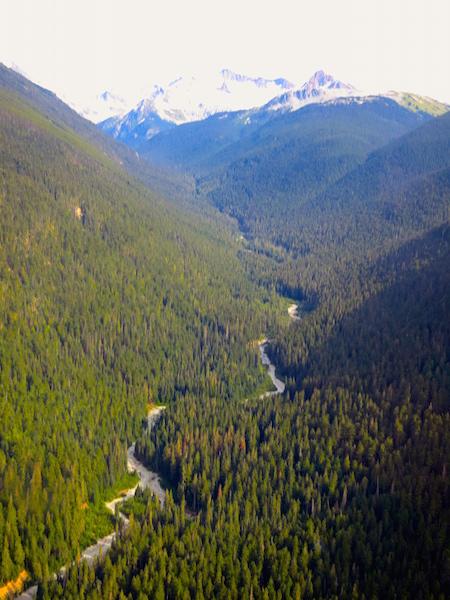 Peak to Peak Whistler Gondola