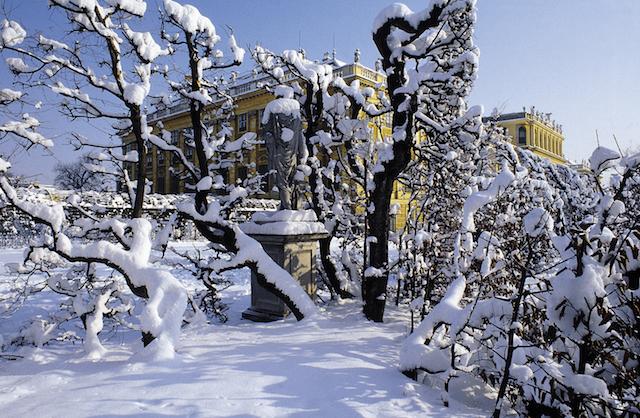 Tours Vienna, Schonbrunn Palace in snow