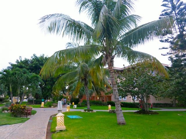 Iberostar Varadero grounds, affordable luxury Caribbean