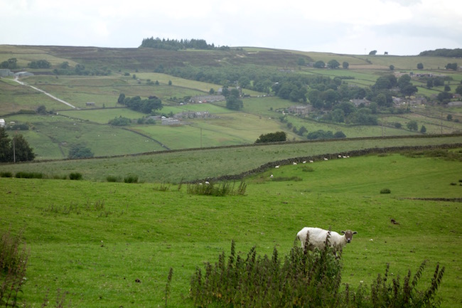 Bronte walk Haworth England