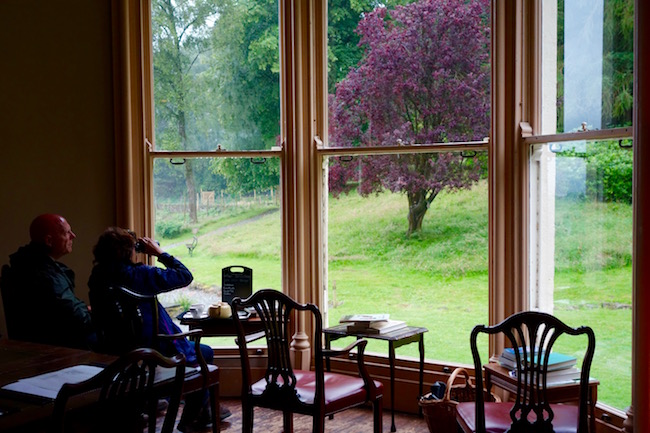 Things to do in the Lake District, visit Allan Bank