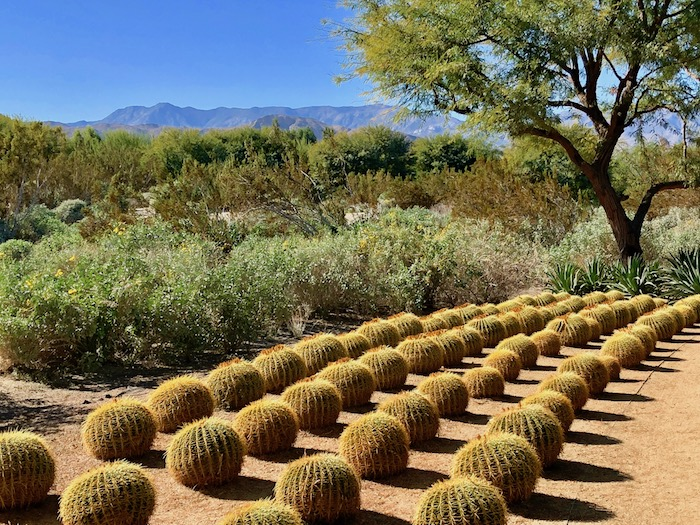 Sunnylands Palm Springs California