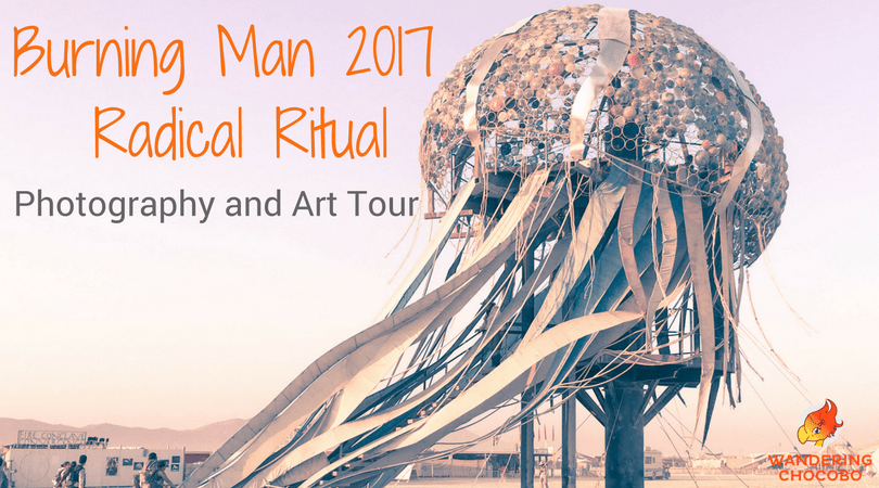 Burning Man Photography Art Radical Ritual 2017 Wandering Chocobo