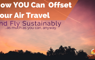 How you can offset air travel and fly sustainably