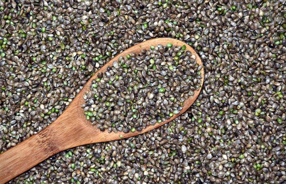 hemp seed organic material