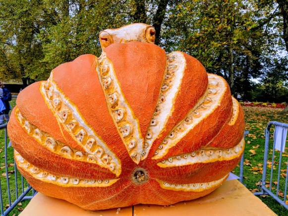 October travel in Europe. Giant pumpkins at the world's largest pumpkin festival in Germany.