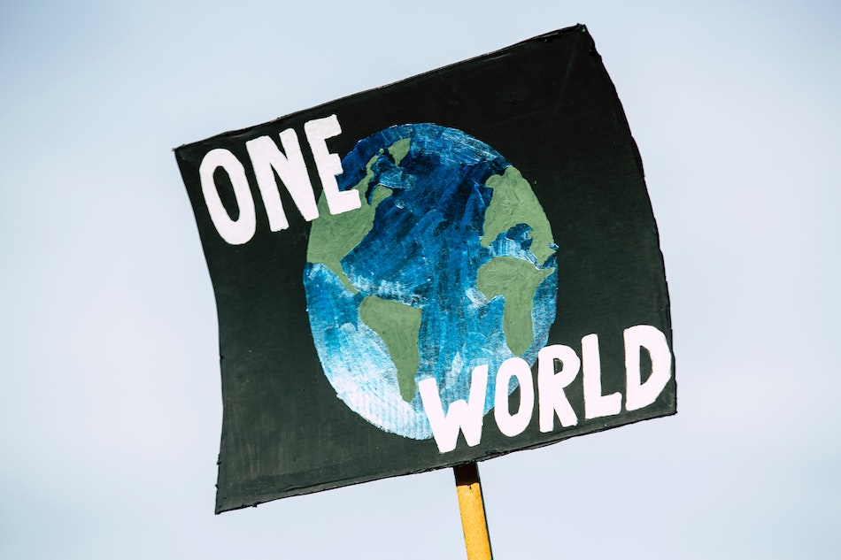 Protest Poster Earth Day