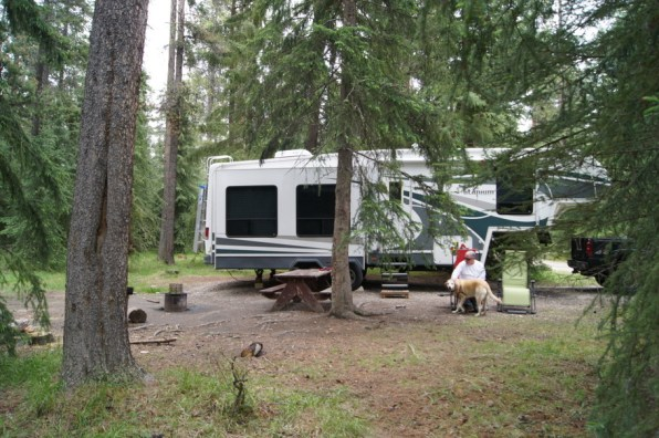 Our campsite at Whistler's Campground. We passed by elk with calves on the way to our site.