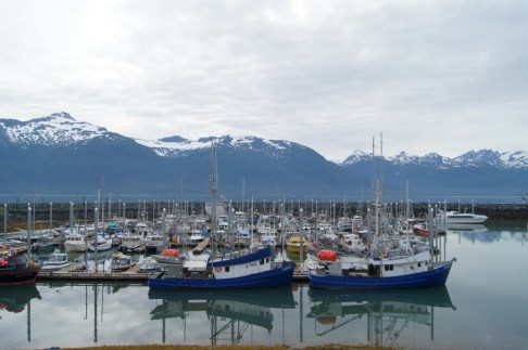I walked around Haines Harbor in the early morning