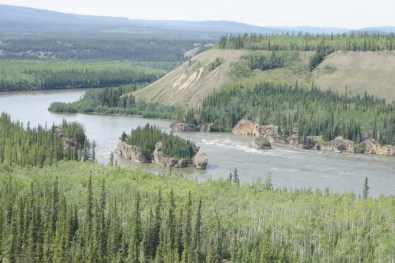 During the Gold Rush days in the Klondike the steam boats had to pass through treacherous water here at the Five Finger Rapids on the Yukon River.